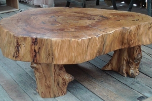 yellowwood disc
